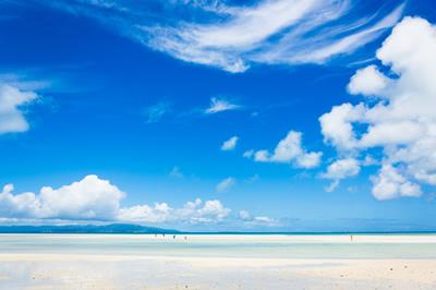爽快な南の夏の海